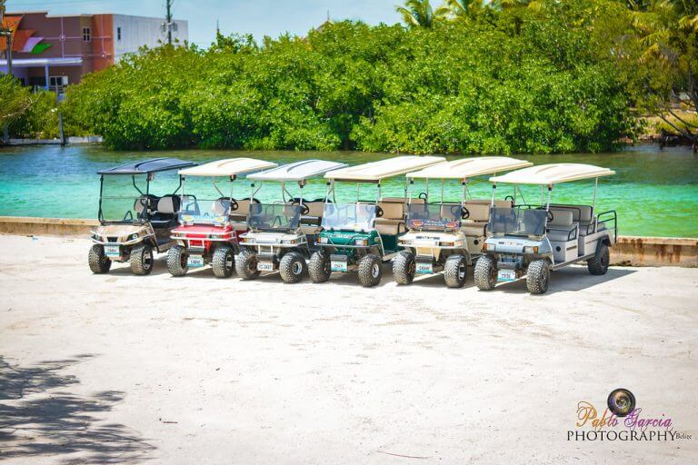 Book A Golf Cart with Avis Golf Cart Rental